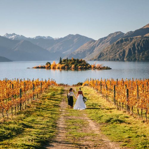 Rippon Vinewayrd - Wanaka wedding venue