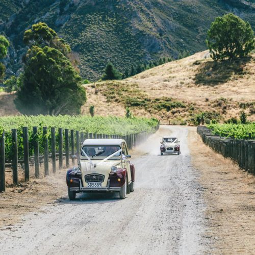 Wanaka Vineyard Wedding - Vintage Cars